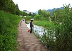 Turenscape transforms a ditch into wetland park in China