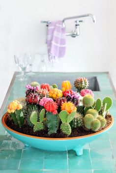 21 creative succulent container gardens you can buy or DIY, like this gorgeous, colorful bowl planter.