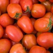 How Close to Plant Roma Tomatoes in Containers | eHow
