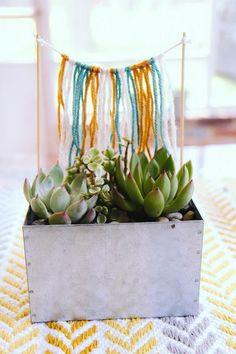 DIY Succulent Planters  : DIY Succulent parade