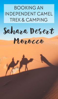 A detailed guide for how to independently book a camel trek and camping in the Sahara Desert, Morocco directly from Merzouga.