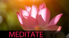 ★ Princessly Pink ★ 6 Hour Meditation Music: Background Music, Relaxing Music, Soft Music, S...