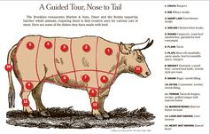 Beef 101. now we know what part of the cow we eat.