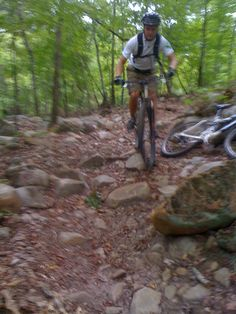 4th of july trail run