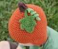 Crochet Pumpkin Leaf and Stem