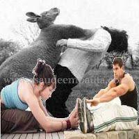 A Saúde em Pauta: Como medir sua flexibilidade. Acompanhe a evolução...
