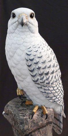 Bird carving - Gyrfalcon Bird Carvings of Carved wood, Artist Tim McEachern Pretty Birds, Beautiful Birds, Animals Beautiful, Exotic Birds, Colorful Birds, Animals And Pets, Cute Animals, Birds Of Prey, Wild Birds