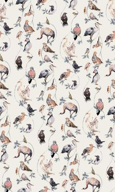 Flights+of+Fancy+Cream+(H202-4)+-+House+Of+Hackney+Wallpapers+-+A+symphony+of+exquisite+British+and+migratory+birds+against+a+cream+background.+Total+mural+size+180cm+wide+x+300cm.+Supplied+as+a+single+roll+comprising+of+4+x+3m+lengths,+each+45cm+wide..+Paste-the-wall+product.+Sorry+samples+not+available.+