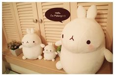 New Kawaii Cute Molang Rabbit Soft Plush Toy Pillow Cushion in Pillows | eBay