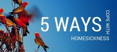 Missing home? Five ways to cope with homesickness
