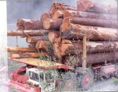 Butler Bros. log truck