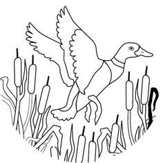 1000 images about duck dynasty themed party on pinterest for Duck hunting coloring pages