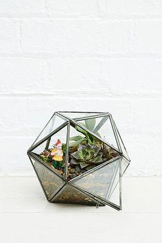 Urban Grow Diamond Terrarium Planter in Silver - Urban Outfitters