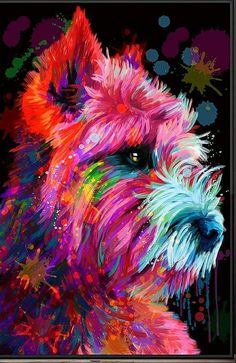 Need this Westie poster Animal Paintings, Animal Drawings, Cairn Terriers, West Highland Terrier, Colorful Animals, Arte Pop, Dog Portraits, Westies, Illustrations