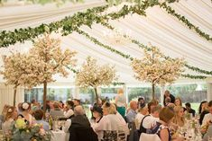 Marquee wedding decoration by Passion for Flowers ivy from ceiling tree within marquee Wedding Ceiling Decorations, Marquee Decoration, Wedding Flower Decorations, Wedding Centerpieces, Wedding Flowers, Marquee Wedding, Tent Wedding, Boho Wedding, Wedding Reception