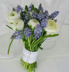 Hand Tied Posy: White Ranunculus + Blue Muscari Hyacinth
