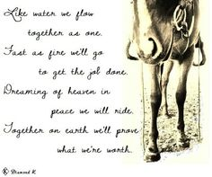 Me and my horse Cowgirl And Horse, My Horse, Horse Love, Horses, Cowgirl Quote, Western Quotes, Equestrian Quotes, Country Quotes, Words To Live By Quotes