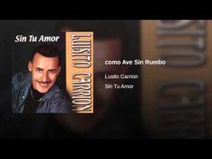 """""""Como Ave Sin Rumbo""""  - LUISITO CARRION"""