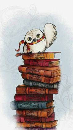 Wall paper ipad harry potter book 33 Ideas - That kitchen wall. Hedwig Harry Potter, Harry Potter Tumblr, Immer Harry Potter, Hery Potter, Harry Potter Phone Case, Classe Harry Potter, Arte Do Harry Potter, Harry Potter Artwork, Harry Potter Pictures