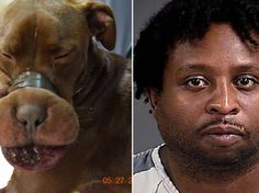 William Leonard Dodson, 41, is accused of taping a 15-month-old dog's mouth shut with electrical tape.