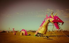 Discover more every day. Music Festival Outfits, Festival Clothing, Music Festivals, St Helena, Cape Town, West Coast, Good Music, South Africa, To Go