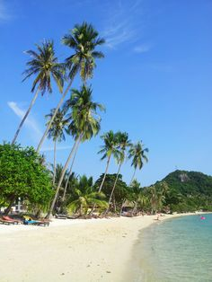 Thailand - Koh Phangan (Coconut Beach)