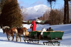 Go horseback riding through Lake Placid's trails & enjoy the scenery of the Adirondacks, or take a horse-drawn sleigh ride in the winter! Horse Wagon, Horse Drawn Wagon, Horse Cart, Sleigh Rides, Bob Sleigh, Dashing Through The Snow, Horse Carriage, Equine Photography, Winter Landscape