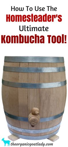How To Use The Kombucha Continuous Brew System, Kombucha Recipes, Kombucha Flavors, Kombucha Tea, Kombucha on the Homestead Kombucha Flavors, Kombucha Recipe, Kombucha Tea, Continuous Brew Kombucha, Fermented Foods, Probiotic Foods, Backyard Farming, Preserving Food, Recipes For Beginners
