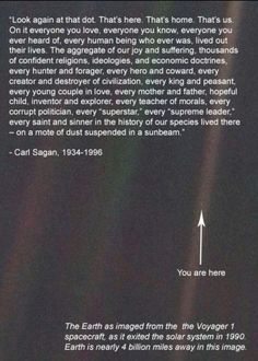 Carl Sagan ... I've often wondered if every little grain of sand contains a world of which we know nothing.