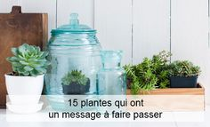 Enfin vous savez à quoi vous servent vos vieux pots de yaourts en verre. Nettoyez-les, versez-y un peu d'eau, et hop, de jolis vases pour accueillir vos fleurs...