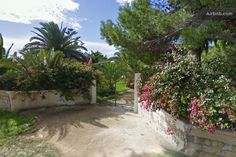 Casa vacanze la Pineta https://www.airbnb.it/rooms/2229796
