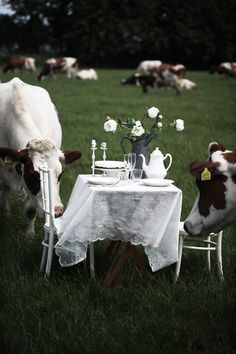 ~The girls have arrived for tea!~~now this is a country garden party!