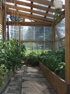 Attached greenhouse, 'safe' harvesting in the winter... I like the walkway width