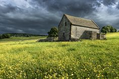 Showers & Buttercups - Haddon Hall, Derbyshire
