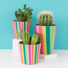 Make these fun colorful planters with only a few supplies.