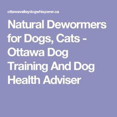die besten 25 natural dewormer for dogs ideen auf pinterest mittel gegen hundefl he. Black Bedroom Furniture Sets. Home Design Ideas