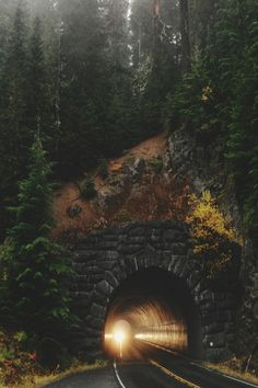 "My novel ""Promise"" runs through places like this. Tunnel in Mt Rainier National Park Oh The Places You'll Go, Places To Travel, Places To Visit, Travel Destinations, Monte Rainier, Mt Rainier National Park, Ville New York, Beau Site, Evergreen State"