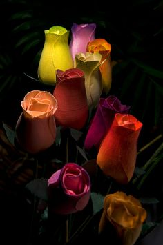 So many different colours, everlasting wooden roses
