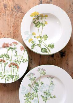 ff17d671a600fe5115e5ed48cd624aec Painted Plates, Ceramic Plates, Porcelain Ceramics, China Porcelain, Ceramic Pottery, China Painting, Ceramic Painting, Pottery Painting Designs, Villeroy