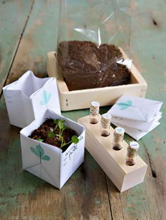 DIY Christmas Gifts - Ideas for DIY Christmas Gifts - Country Living