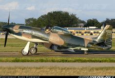 Cavalier F-51D Mustang 2 aircraft picture