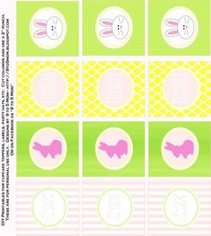 Party circles  - bunnies