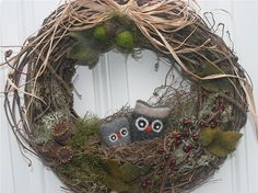 Sweet little Owls in their woodland nest! shows a loving relationship with Mama…