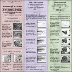 Tutorial: Detailed Hair part 2 by `Cataclysm-X on deviantART