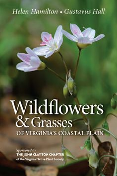 Sponsored by the John Clayton chapter of the Virginia Native Plant Society. You can buy it here: http://www.brit.org/brit-press/books/VAwildflowers