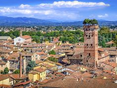 Filled with antique shops, almost 100 churches, and trattorias serving hearty Tuscan fare, the walled Tuscan city is missing one thing: the crush of tourists that can overwhelm some of its neighbors, which makes it not just a lovely place to visit, but a welcome respite as well.