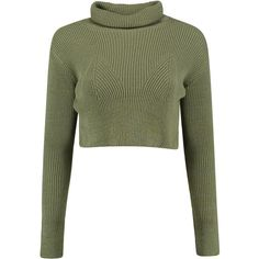 Jasmine Rib Turtle Neck Crop Jumper ($22) ❤ liked on Polyvore featuring tops, sweaters, crop tops, turtle neck crop top, turtle neck sweater, turtleneck crop top, ribbed sweater and crop top