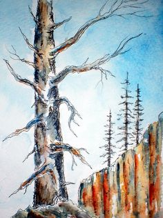 INK & WATERCOLOR TREE SKETCH    Just a simple little Ink & Watercolor Wash ...:) @ Louise Christian