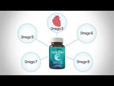 Learn about what makes Zennoa's Core Care omega supplement different in this brand-new informational video. Make Money From Home, Way To Make Money, How To Make, Hd Warrior, Huntington Disease, Love My Body, Design Your Life, Food Industry, Eat Cake