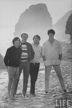 http://images2.fanpop.com/image/photos/9300000/The-Beach-Boys-the-beach-boys-9305080-855-1280.jpg